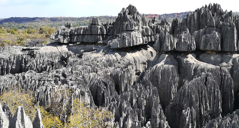 Tsingy-de-bemaraha-tour-operator-madagascar